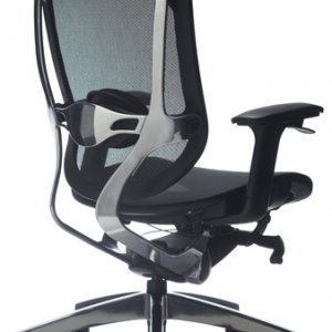 Drive-mesh-back-executive-chair