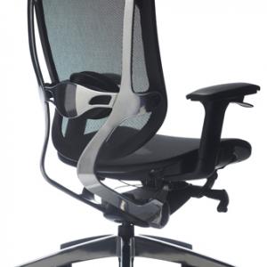 Drive-mesh-back-executive-chair